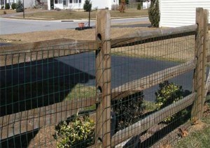 Split Rail with wire mesh
